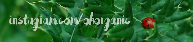 Отзыв о лосьоне для тела с лавандой от Andalou Naturals